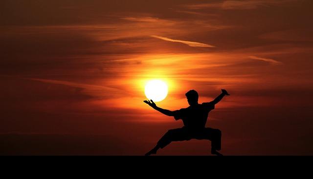 trénink kung fu.jpg